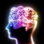 Brain workings